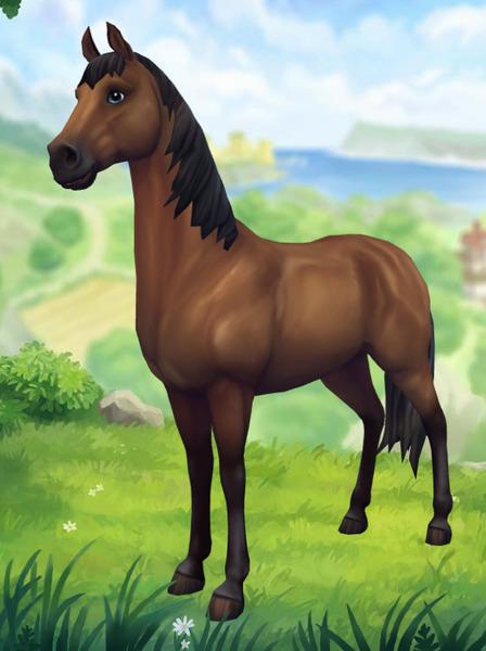 Start Pferde Starstable Datenbank